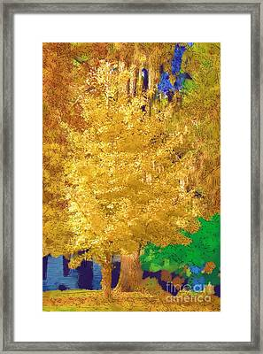Framed Print featuring the photograph Golden Tree by Donna Bentley