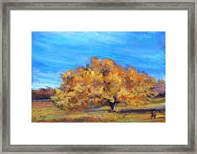 Golden Tree Framed Print by Susan Jenkins