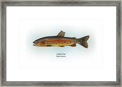 Golden Trout Framed Print by Ralph Martens