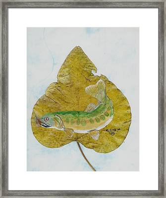 Golden Trout Framed Print