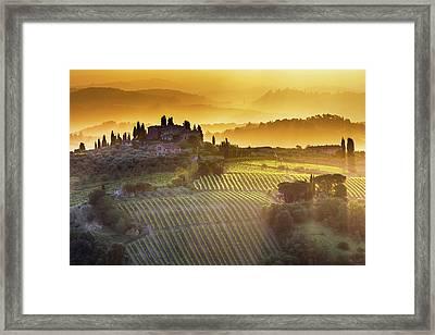Golden Tuscany Framed Print