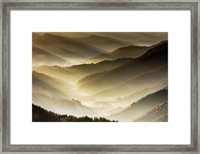 Golden Valley Framed Print by Evgeni Dinev