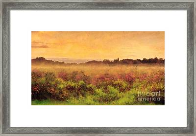Golden Valley Sunrise - Misty Meadows Morning Framed Print by Janine Riley