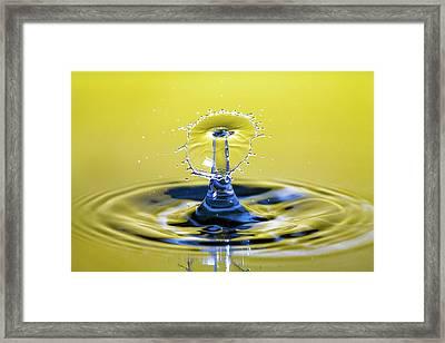 Golden Water Drop Umbrella Framed Print