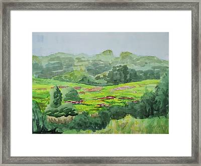 Goldenrod Field Framed Print by Bethany Lee