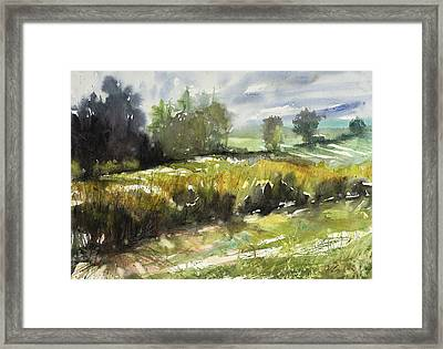 Goldenrod On The Lane Framed Print by Judith Levins