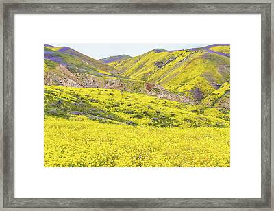 Framed Print featuring the photograph Goldfields And Temblor Hills by Marc Crumpler