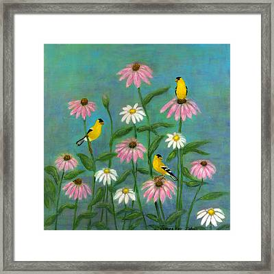 Goldfinch And Cone Flowers Framed Print