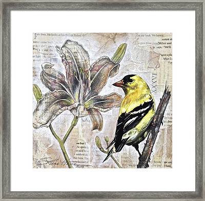 Goldfinch And Lily Framed Print