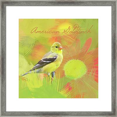 Framed Print featuring the photograph Goldfinch Watercolor Photo by Heidi Hermes