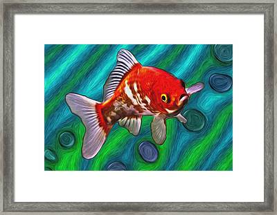 Goldfish Framed Print by Eastern Sierra Gallery