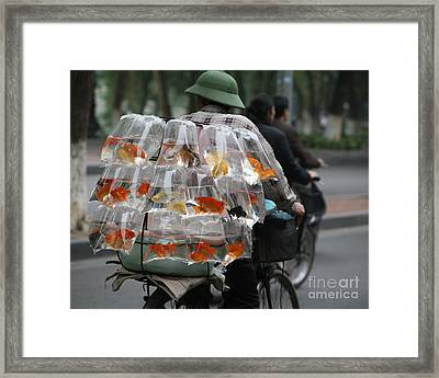 Goldfish In A Bag Vietnam On Bicycle Unique  Framed Print