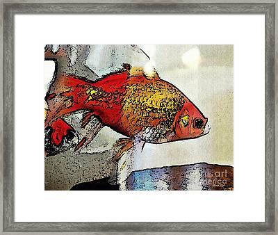 Goldfish Framed Print by Sarah Loft