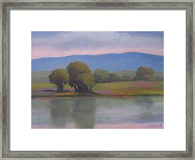 Goleta Estuary Framed Print by Jennifer Boswell
