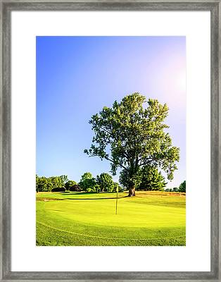 Framed Print featuring the photograph Golf Course by Alexey Stiop