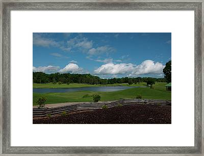Golf Course The Back 9 Framed Print by Chris Flees