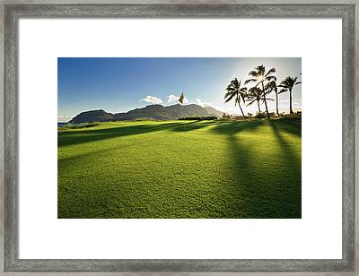 Golf Flag In A Golf Course, Kauai Framed Print by Panoramic Images