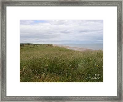Golf In Scotland Framed Print by Jan Daniels