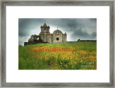 Goliad In Spring Framed Print