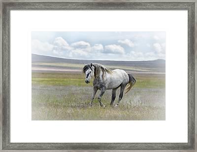 Goliath Framed Print by Joe Hudspeth