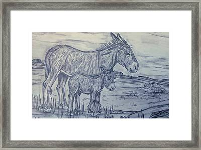 Gone Feral Framed Print