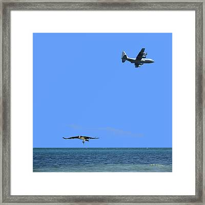 Framed Print featuring the photograph Herky Bird And Osprey by R B Harper