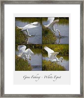 Gone Fishing Collage Framed Print by Carl Jackson