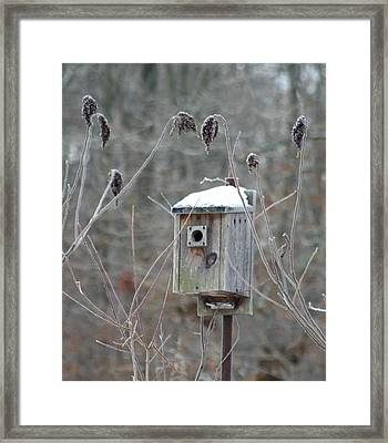 Gone South Framed Print by Diane Merkle