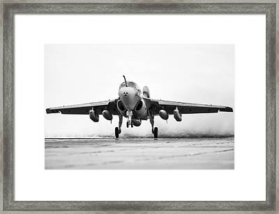 Gone The Way Of The Dodo Framed Print