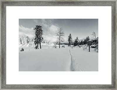 Gone With The Wind Framed Print by Andreas Levi