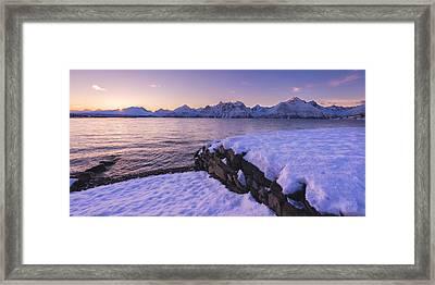 Good Afternoon Framed Print by Tor-Ivar Naess
