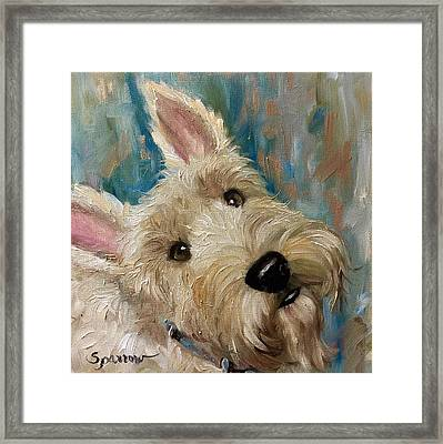 Good As Gold  Framed Print by Mary Sparrow