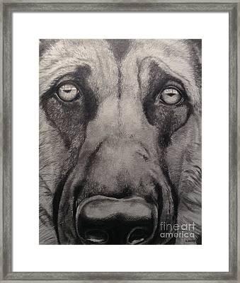 Good Boy Framed Print
