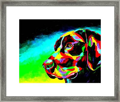 Good Boy Framed Print by Mike OBrien
