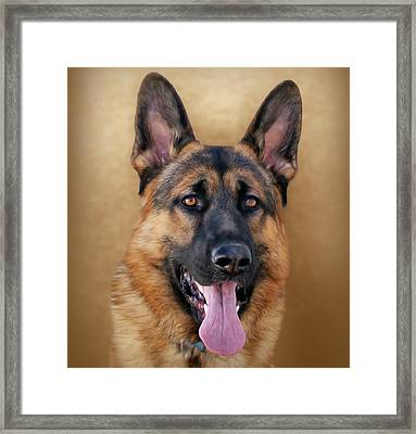 Good Boy Framed Print by Sandy Keeton