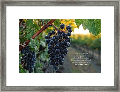 Good Fruit Framed Print by Lynn Hopwood