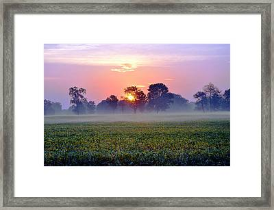 Good Morning Beautiful Framed Print by Brittany H