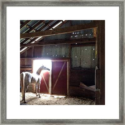 Good Morning, Cisco...hard To Believe Framed Print