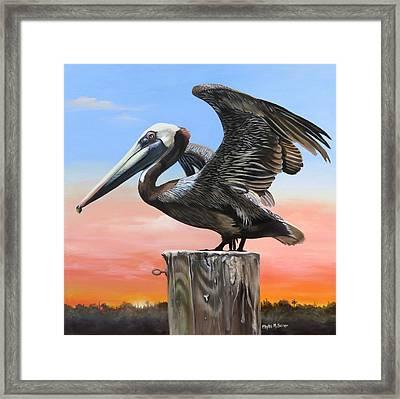 Good Morning Florida Framed Print
