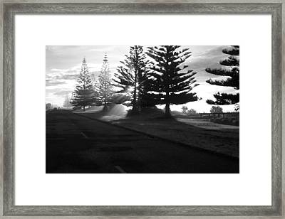 Good Morning Framed Print by Graham Hughes