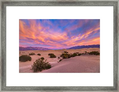 Good Morning Framed Print by Peter Tellone