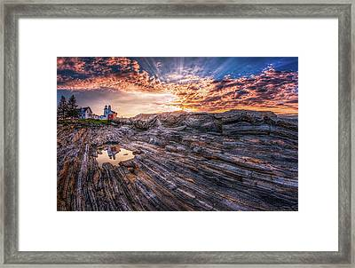 Good Morning Starshine Framed Print