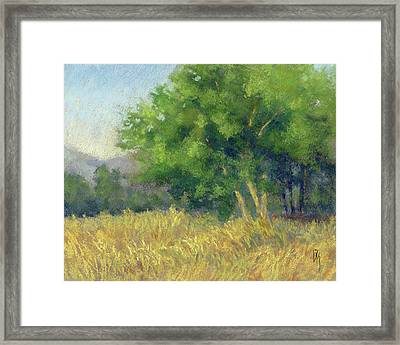 Good Morning Summer Framed Print