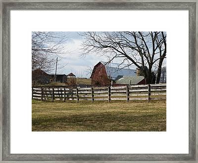 Good Old Barn Framed Print by Donald C Morgan