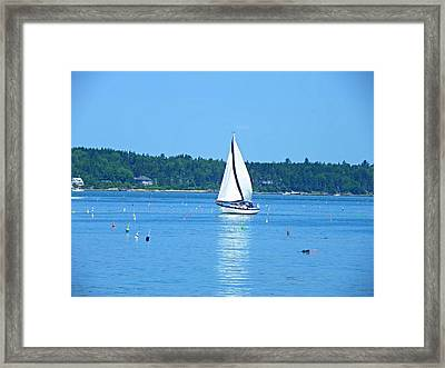 Good Sailing Framed Print