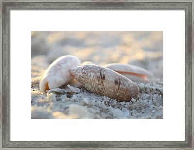 Framed Print featuring the photograph Good Things Come In Threes by Melanie Moraga