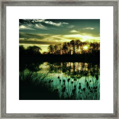 Goodbye To Today Framed Print by Bonnie Bruno