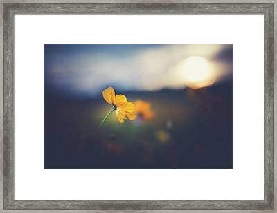 Framed Print featuring the photograph Goodnight Sun by Shane Holsclaw