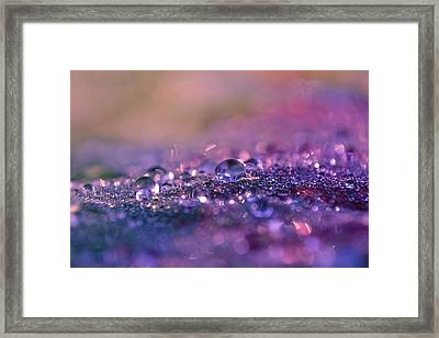 Framed Print featuring the photograph Goodnight Sweet Prince by Melanie Moraga