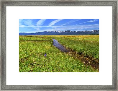 Framed Print featuring the photograph Goodrich Creek by James Eddy